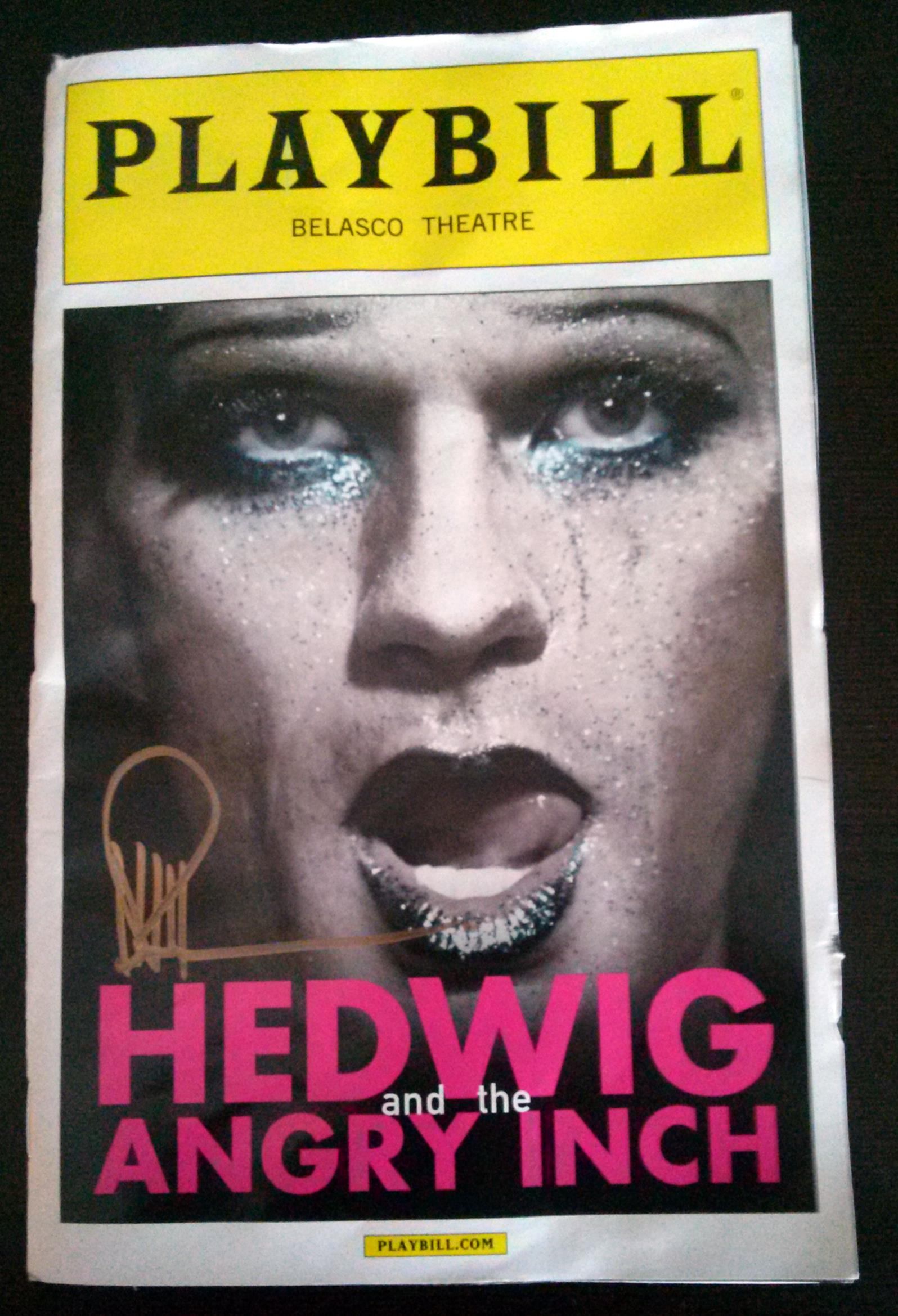 hedwig and the angry inch essay Hedwig and the angry inch plot summary, character breakdowns, context and analysis, and performance video clips.